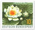 Stamp: Weiße Seerose - Schützt die Pflanzen