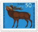 Stamp: Rothirsch (cervus elaphus)