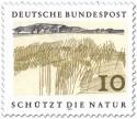Stamp: Schilf am See