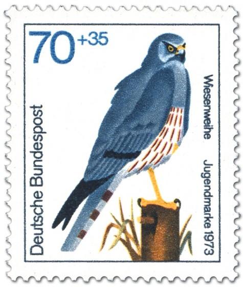 Stamp: Wiesenweihe