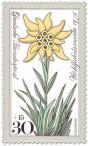 Stamp: Edelweiß (Blume)