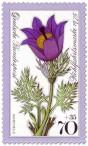 Stamp: Gewöhnliche Kuhschelle (Pulsatilla vulgaris)