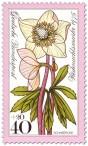 Stamp: Schneerose / Christrose (Weihnachtsmarke 1975)