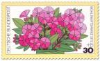 Stamp: Blume: rosa Phlox