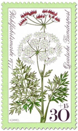 Stamp: Kümmel Wiesenblume