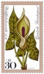 Stamp: Aronstab (Waldblume)