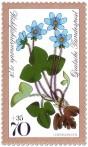 Stamp: Leberblümchen (Waldblume)