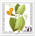 Stamp: Ranken-Platterbse (Wildkraut)