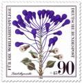 Stamp: Träubelhyazinthe (Wildkraut)
