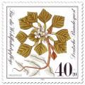 Stamp: Wassernuss (Pflanze)
