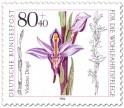 Stamp: Violetter Dingel Orchidee
