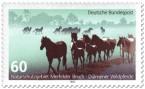 Stamp: Dülmener Wildpferde im Merfelder Bruch