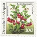Stamp: Preiselbeeren (Vaccinium vitis-idaea)