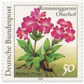 Stamp: Wulfens Primel